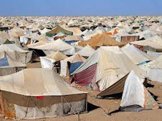 Uno tras otro, todos los gobiernos de la democracia se han desentendido de sus responsabilidades con el Sáhara
